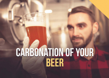 Carbonation of your beer